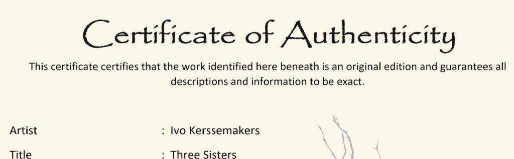 Ivo Kerssemakers Certificate of Authenticity
