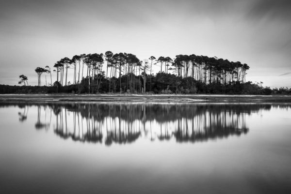Myrtle Beach, North, trees, inlet, long exposure, Black White, BW, Ivo Kerssemakers