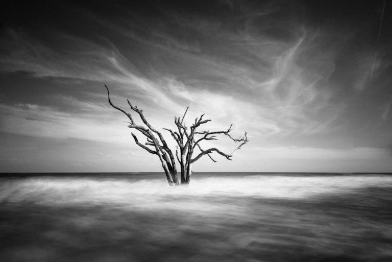 Botany Bay, Edisto Island, Charleston, South Carolina, Black and White, B&W, Long Exposure, Ivo Kerssemakers