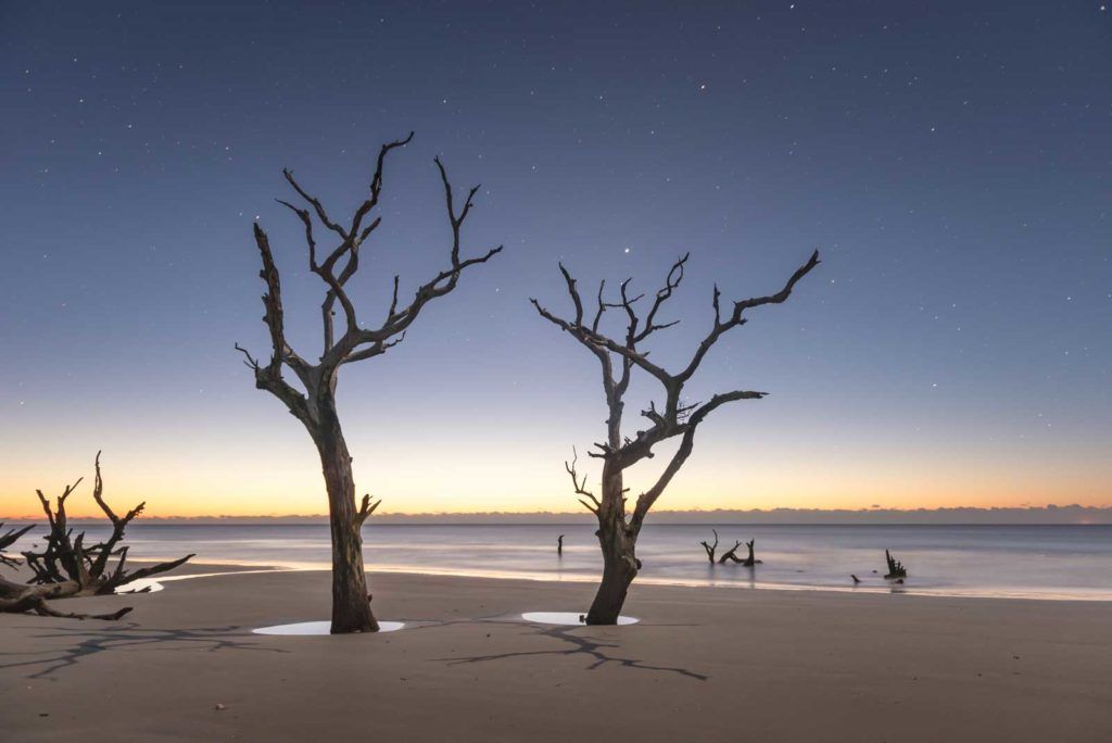 Bulls Island, Boneyard beach, Beach, Sunrise, tree, South Carolina, Dawn, Stars, Moonlight, Fine Art, Ivo Kerssemakers