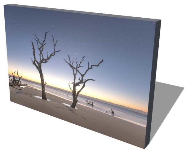 Bulls Island, Boneyard beach, Beach, Sunrise, tree, South Carolina, Dawn, Stars, Moonlight, Fine Art, Ivo Kerssemakers