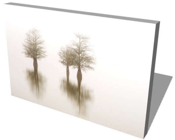 canvas print of three cypress trees on lake Marion, South Carolina, isolated in the fog, by Ivo Kerssemakers