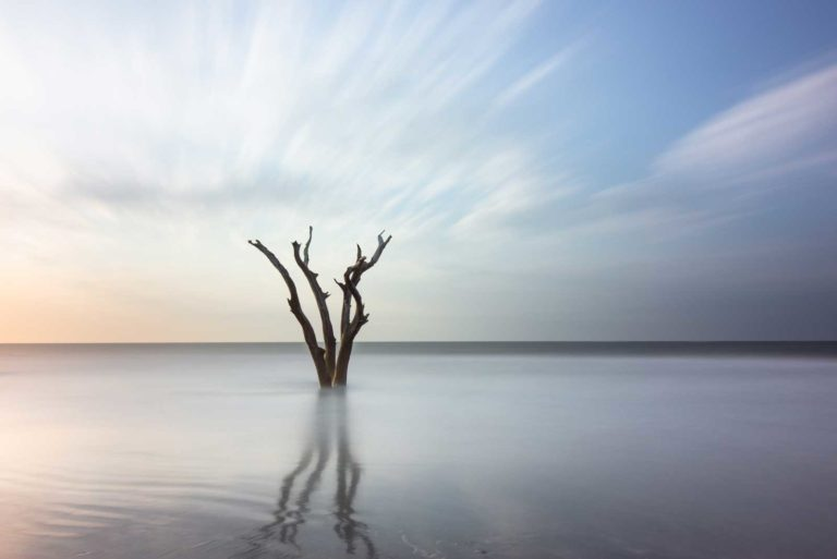 Lone tree in the ocean on Bull Island, South Carolina, with smooth water and streaky clouds created by a long exposure technique