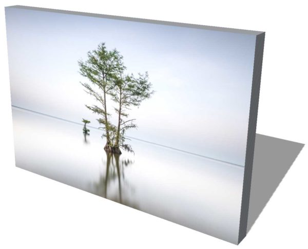 Canvas print featuring a Long exposure photograph of a single cypress tree on Lake Moultrie, South Carolina, before sunset hours