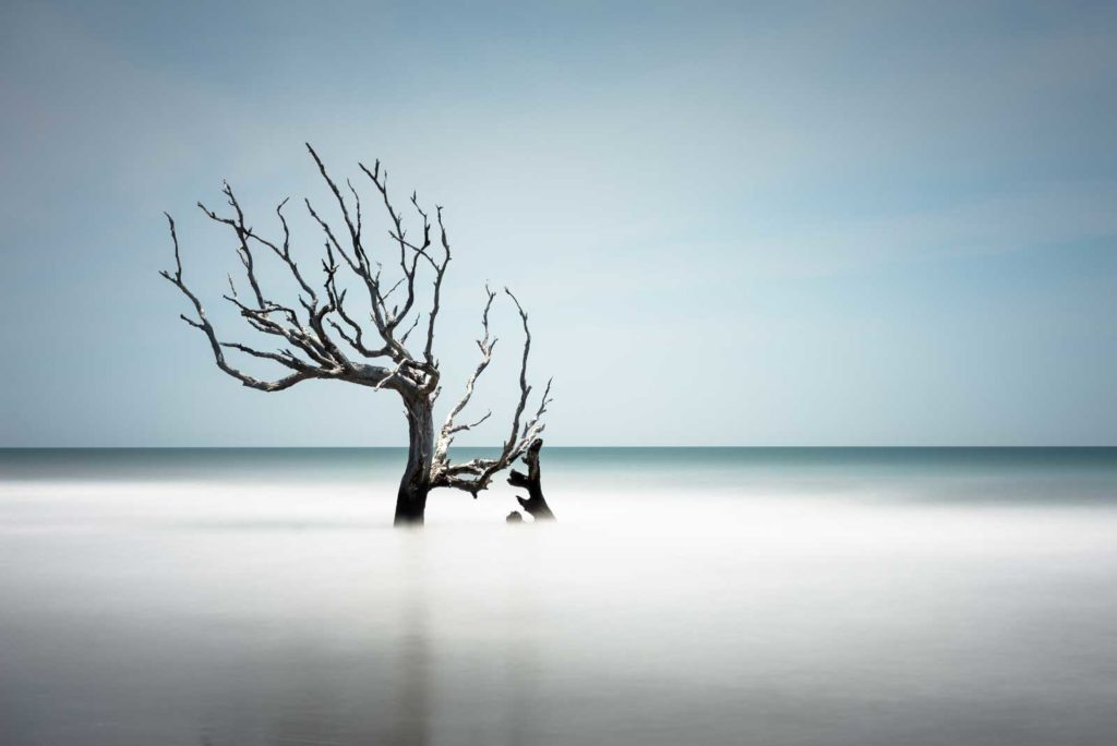 Bull Island, Boneyard Beach, South Carolina, Long Exposures, Ivo Kerssemakers