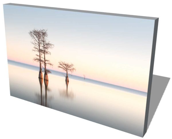 canvas print of three cypress trees on lake Moultrie, South Carolina, with soft sunrise colors in the background