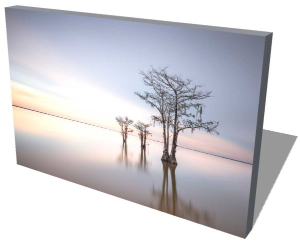 canvas print of cypress trees on Lake Moultrie, South Carolina, with sunrise colors in the background, by Ivo Kerssemakers