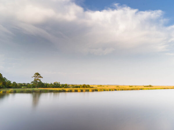 South Santee River, Georgetown with a view of the marsh, Fine art photograph by Ivo Kerssemakers