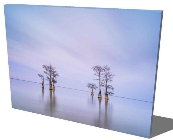 canvas print of a grouping of cypress trees on Lake Moultrie, South Carolina, after sunset hours, by Ivo Kerssemakers